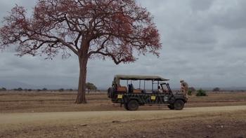 Rajala safari
